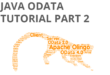 Java Odata tutorial part 2