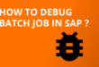 How to debug batch job in SAP ?